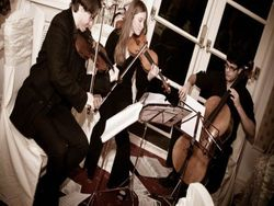 String Trio in action