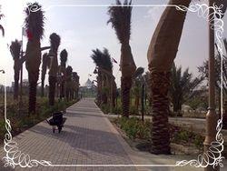Princess Sabeeka park walkway