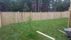 147' Of 6' High Pressure Treated Fencing