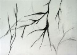 Drawing 25 Eleanor MacFarlane