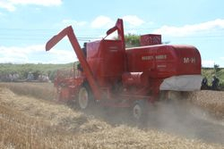 Massey Harris 780 Special combine at work