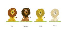 THE MALE LIONS OF WHF