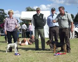 2013 OPEN SHOW - BEST PUPPY (left) & RESERVE (right).