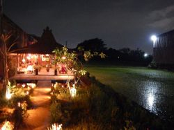 ROSELLA EASY DINING at the top of yogyakarta restaurants