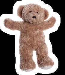 Teddy our Bear