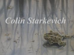 "Great Plains Toad (9 by 12"" oil on canvas) In Private Collection"