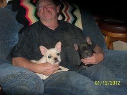 Tinys Puppy's Annie & Tiny Tim