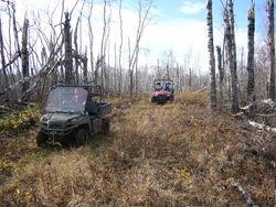 Oct 20 Trail Work