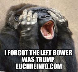 I forgot the left bower was trump.