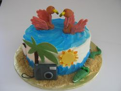 Florida/ Photographer cake