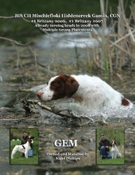 AM CAN GCh Mischiefloki Hiddencreek Gamin, FDJ, CGN