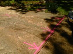 Marking existing Driveway for partial removal