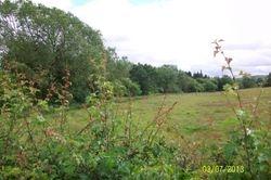 Suffolk Hill from Castle Douglas Road