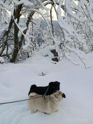 Egon & Ingeborg 12.01.2011