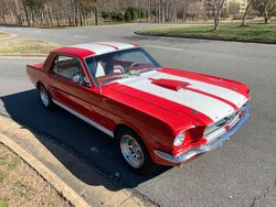 25.66 Mustang