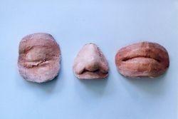 'Identiparts' artificial body parts, 1998