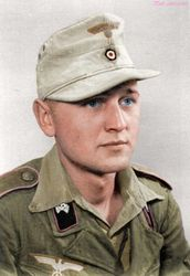 1. Pz.Rgt.,1. Pz.Div. in Greece 1943: