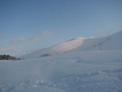 Jan 10, snow 14