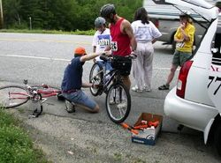 Rover helping cyclist