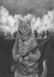Sharpe's Cats