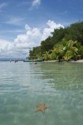Bocas del Toro, Panama 6