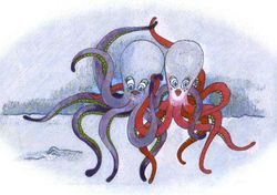 A tangle of octopi