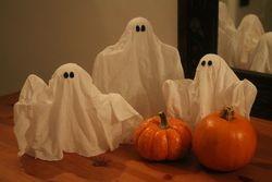 Pumpkin Patch Boo! Ghosts!