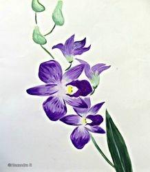 Thai Orchids #1