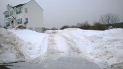 Dirt Driveway