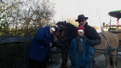 Petit calin aux chevaux