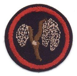 Willow Ranger Patrol Badge