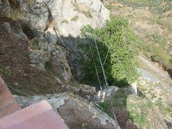 Zip Wire and Aerial Walkways
