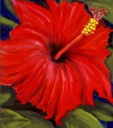 Hibiscus - Red