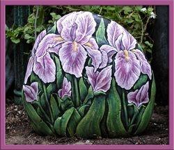 Iris - Pink (front)