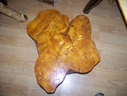 this ti also poplar tree stump in shape of a leaf