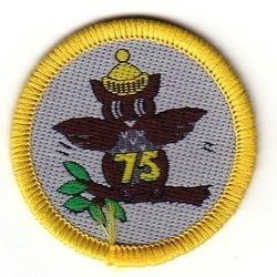 Brownie 75th Anniversary Badge, 1989
