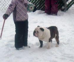 Mya et Julius hiver 2011