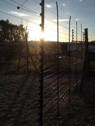 Electric Game Fence