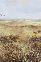 Soaring Plains