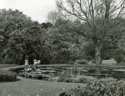 the grounds of Cliffden and lily pond