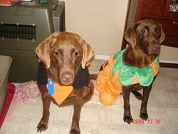 Koko and Kassey Halloween 2009