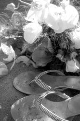 Tahoe Wedding 09/2009- Sand Harbor