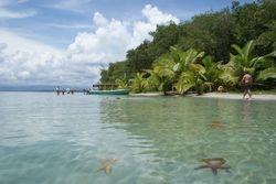 Bocas del Toro, Panama 5