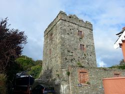 Strangford Castle, Strangford, County Down