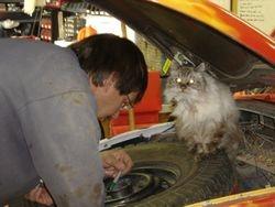 Garage help