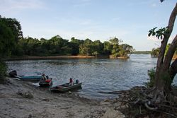 Essequibo River