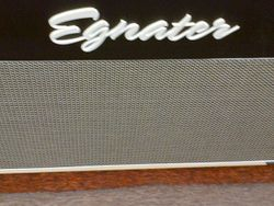 Egnater Renegade Guitar Amplifier