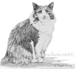 Stumpy Pet Portrait Commission
