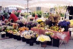 Aix Flower Stall