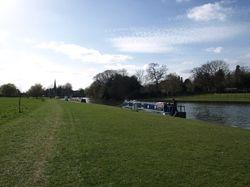 Abingdon mooring